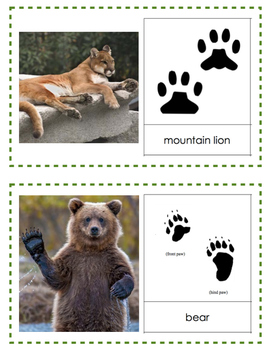 Animal Tracks Painting Activity
