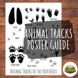Animal Tracks Poster & Guide