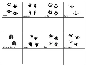 Animal Tracks Three Part Cards and  Mini Matching Cards