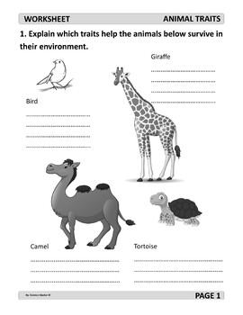 Animal Traits Worksheet on animal challenges worksheets, animal actions worksheets, animal life cycle worksheets, animal activities worksheets, animal health worksheets, animal cells worksheets, days of the week worksheets, similarities and differences worksheets, animal research worksheets, addition & subtraction worksheets, animals vertebrates and invertebrates worksheets, animal family worksheets, identifying emotions worksheets, first grade animal classification worksheets, animal name worksheets, animal color worksheets, simple fractions worksheets, animal behavior worksheets, animal species worksheets, animal worksheets for 1st grade,