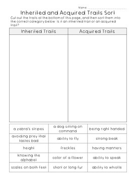 Animal Traits and Life Cycles Worksheets