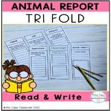 Animal Tri Fold Report 3rd Grade & 4th Grade