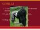 Animal Trivia Game: 2nd Edition