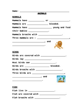 Animal Types Outline
