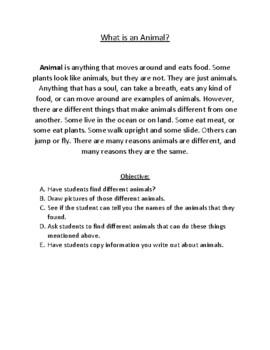 Animal Lesson Plans
