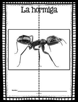 Animal Unit - The Ant - in Spanish