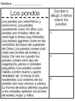 Animal Unit in Spanish