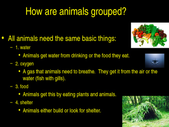 Animal Unit ppt