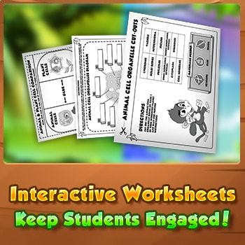 Animal VS Plant Cells - Interactive Worksheet Activity