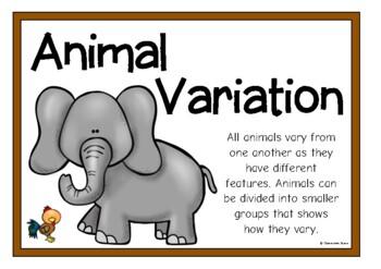 Animal Variation