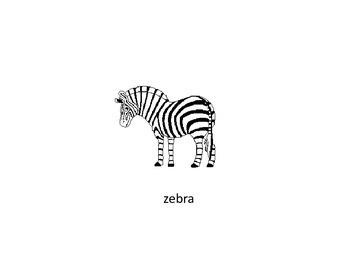 Animal Vocabulary Flash Cards
