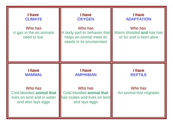 Animal Vocabulary Game