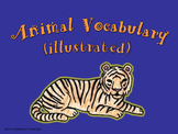 Animal Vocabulary (Illustrated)