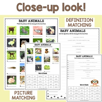 Animal Vocabulary Matching Puzzles BUNDLE (24 Worksheets, 12 sets with keys)