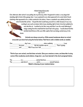 Animal Vocabulary and Personification Packet