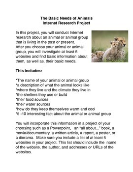Animal Web Research Project