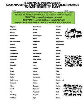 Animal Webquest (Carnivore, Herbivore, Omnivore)