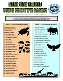 Animal Webquest Crossword Puzzle (scientific names)