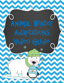 Animal Winter Adaptations Video Guide