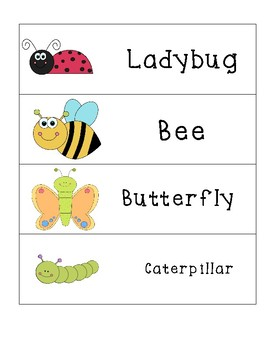 Animal Word Cards