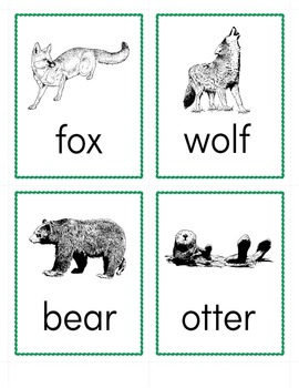 Animal Word Cards - Forest Mammals