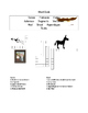 Animal Words Crossword