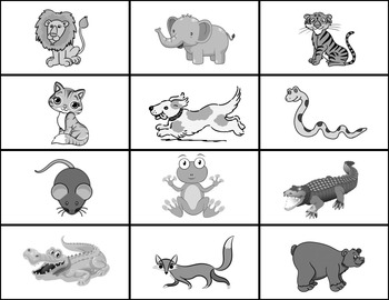 Animal Words Flashcards