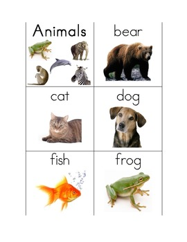 Animal Words for Writing