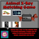 Animal X-Ray Matching Game