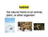 Animal adaptation vocabulary words