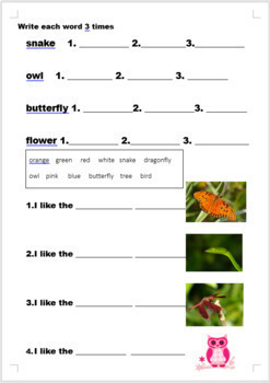 Animal and Colors worksheet