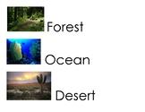 Animal and Habitat Vocabulary Word Cards