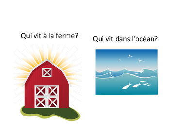 Animal and Habitat sort (en Français)