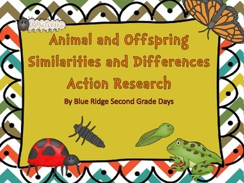 Animal and Offspring Similarities and Differences Action Research