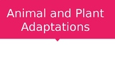 Animal and Plant Adaptations