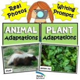 Animal and Plant Adaptations for Structure and Function of