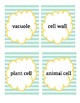 Animal and Plant Cell Headbands Game