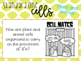 Animal and Plant Cell PowerPoint