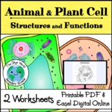 Animal and Plant Cell Structures and Functions - 2 Worksheet Activities