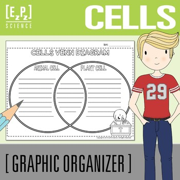Animal And Plant Cells Venn Teaching Resources Teachers Pay Teachers