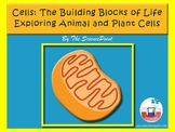 Cells:  Structure of Animal and Plant Cells