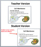 Animal and Plant Cells - A Middle School Biology Lesson