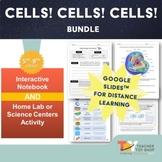 Animal and Plant Cells Bundle | Google Slides™ for Distanc