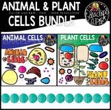 Animal and Plant Cells Clip Art Bundle {Educlips Clipart}