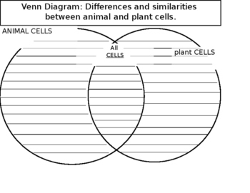 Animal and Plant Cells Differences and Similarities Venn Diagram