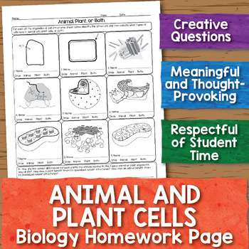 Animal and Plant Cells Biology Homework Worksheet