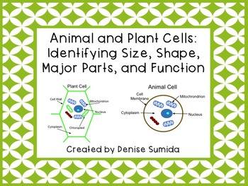 Animal and Plant Cells: Identifying Size, Shape, Major Par