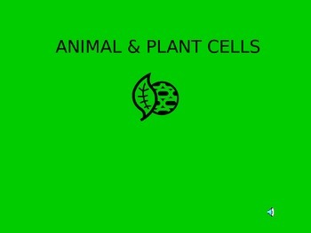 Animal and Plant Cells Power Point Presentation