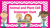 Animal and Plant Cells Scavenger Hunt