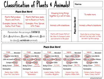 Animal and Plant Classification Interactive Notebook Page **EDITABLE**